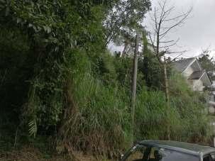 Baguio_Richview 2_Sep2019_002